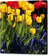 Spring Flowers Square Acrylic Print