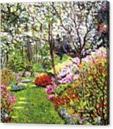 Spring Forest Vision Acrylic Print by David Lloyd Glover