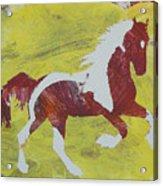 Spring Forward Acrylic Print