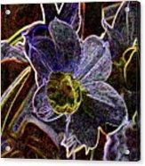 Spring Garden Art Acrylic Print