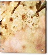 Spring Glory 2 Acrylic Print