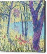 Spring Greeting Acrylic Print