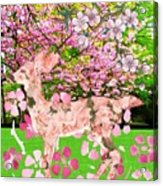 Spring Greeting With Poem Acrylic Print