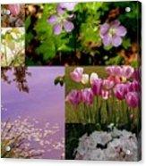 Spring Has Sprung... Acrylic Print