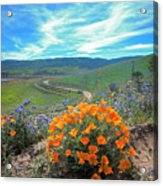 Spring Hilltop View Acrylic Print