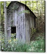 Spring House Acrylic Print by Terry  Wiley