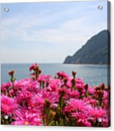 Spring In Cinque Terre Acrylic Print