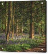 Spring In Haywood No 2 Acrylic Print