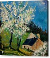Spring In Hierges  Acrylic Print