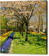 Spring In Keukenhof, Netherlands Acrylic Print