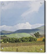 Spring In Livermore Acrylic Print