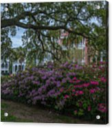 Spring In White Point Gardens Acrylic Print