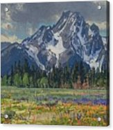 Spring In Wyoming Acrylic Print