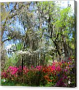 Spring Is All Over Acrylic Print