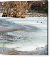Spring Is Coming. The Ice Melts. Acrylic Print