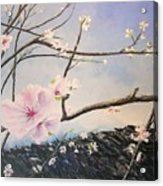 Spring Is In The Air Acrylic Print