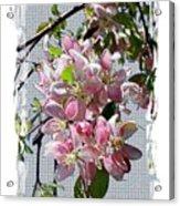 Spring Is Melting Away Acrylic Print
