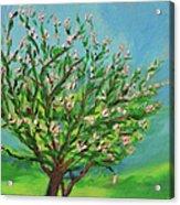 Spring Acrylic Print