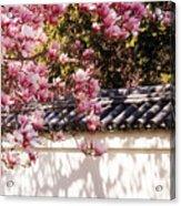 Spring - Magnolia Acrylic Print