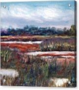 Spring Marsh Acrylic Print