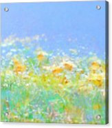 Spring Meadow Abstract Acrylic Print
