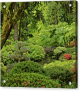 Spring Morning In The Garden Acrylic Print