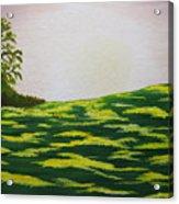 Spring Morning Acrylic Print