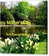 Spring Mother's Day Greeting Acrylic Print