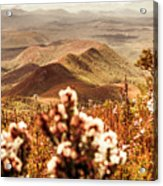 Spring Mountain Blossoms Acrylic Print