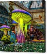 Spring Mushrooms Acrylic Print