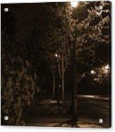 Spring Night Acrylic Print