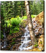 Spring Of Water Acrylic Print