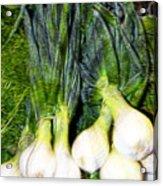 Spring Onions Acrylic Print