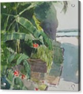 Spring Palms Acrylic Print