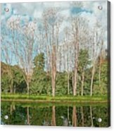 Spring Pond Reflection Acrylic Print
