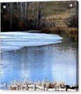 Spring Pond Acrylic Print