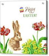 Spring Rabbit And Flowers Acrylic Print