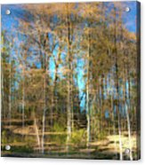 Spring Reflection Acrylic Print