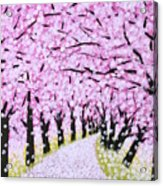 Spring Road  Acrylic Print