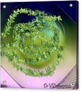 Spring Salad On Glass Plate Acrylic Print