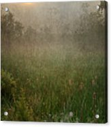 Spring Sunrise In The Valley Acrylic Print by Dale Kincaid
