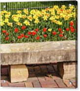 Spring Surrounds The Bench Acrylic Print