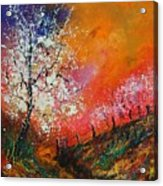 Spring Today Acrylic Print