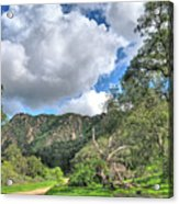 Spring Trail In The Canyon Acrylic Print