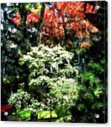 Spring Trees Acrylic Print