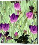 Spring Tulips - Photopower 3051 Acrylic Print