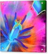 Spring Tulips - Photopower 3127 Acrylic Print