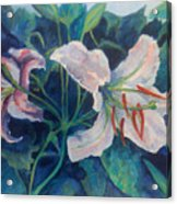 Spring Vegitation Acrylic Print