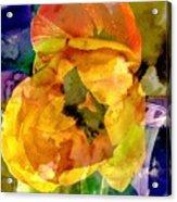 Spring Xx Acrylic Print
