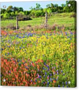 Spring's Floral Quilt Acrylic Print